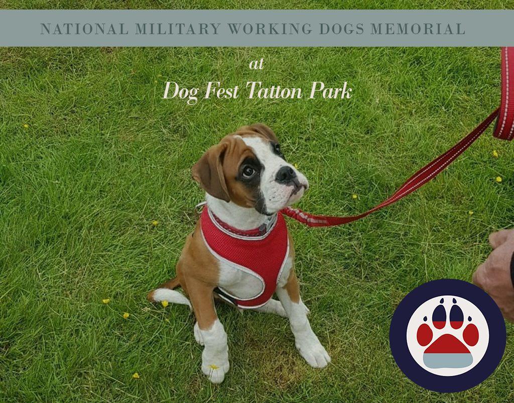 NMWDM at Tatton Park Dog Fest