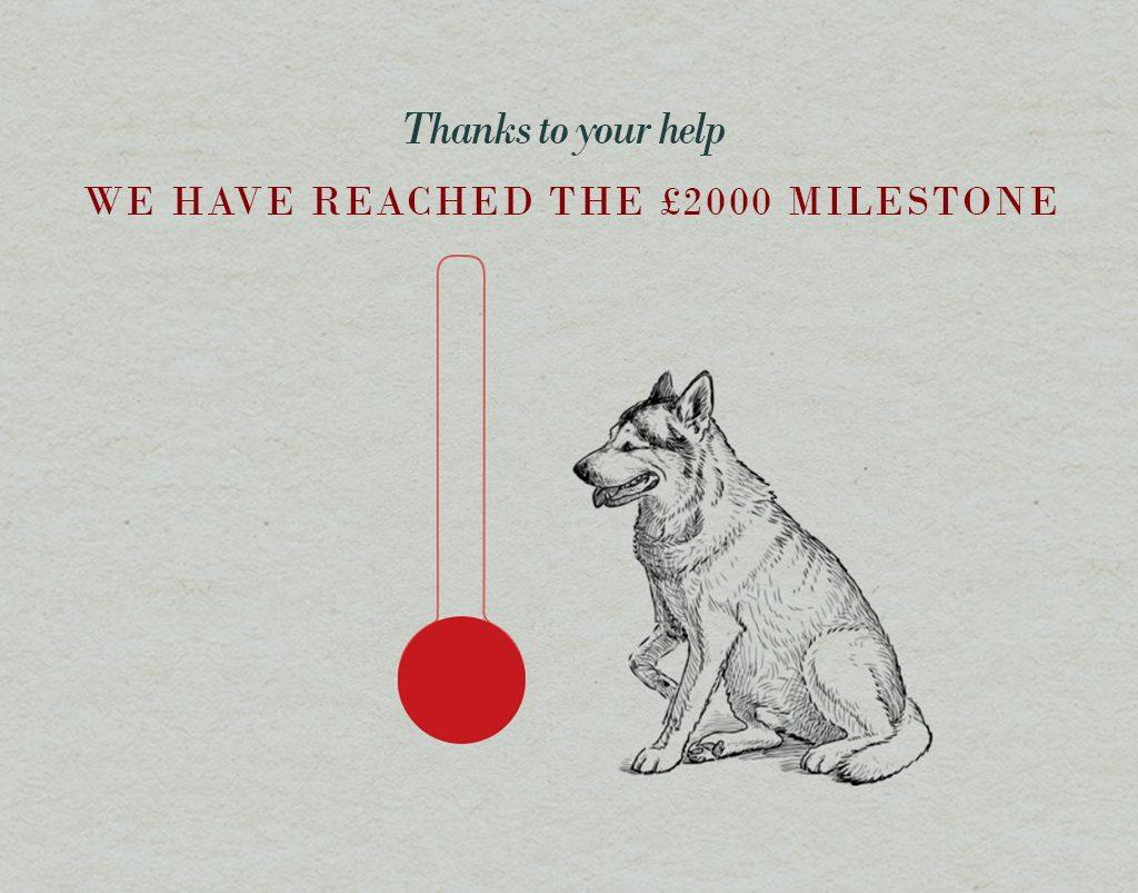 NMWDM UK raises over £2000
